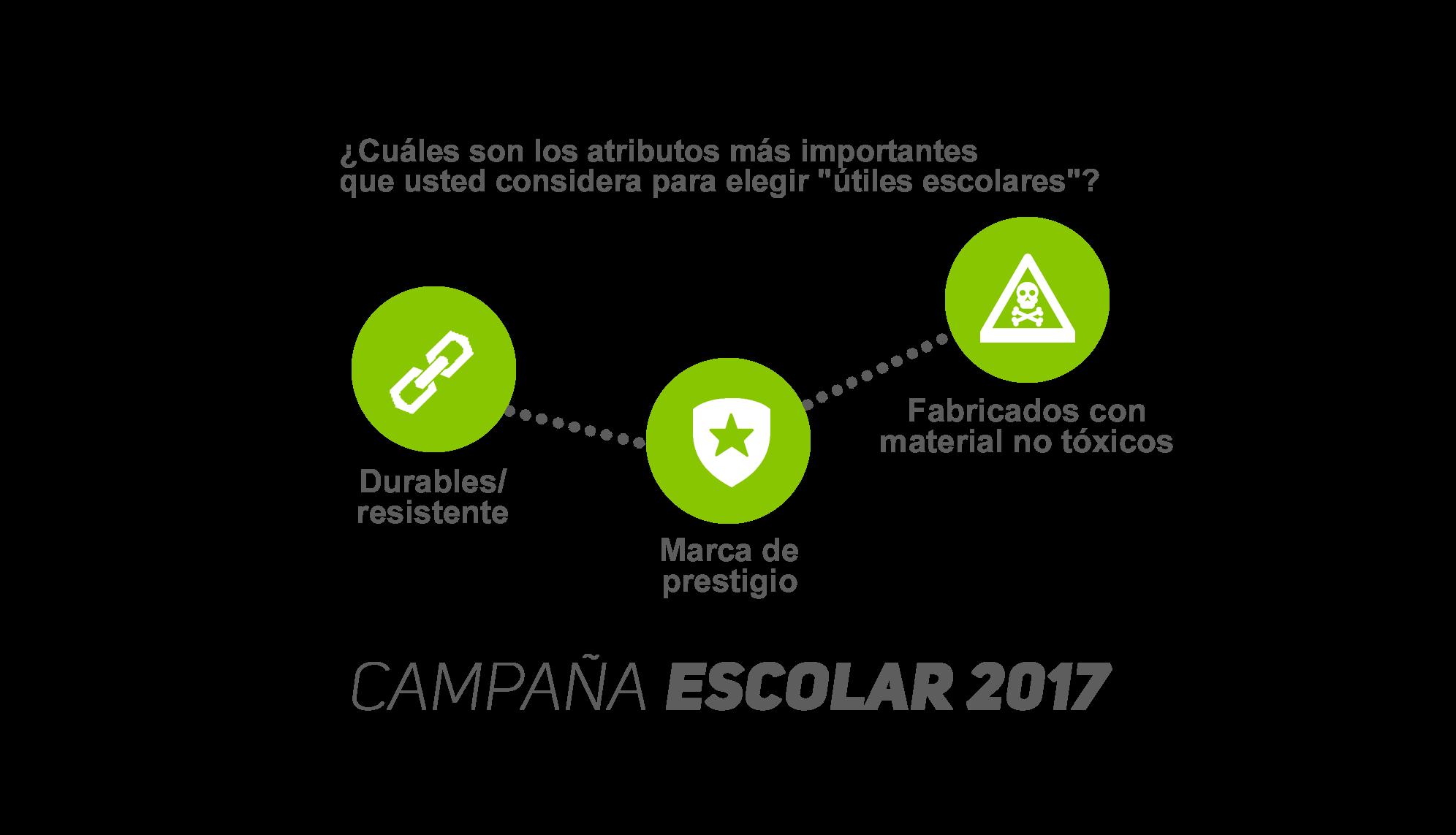 Campaña Escolar 2017